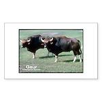 Gaur Bulls Photo Rectangle Sticker