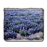 BlueBonnets Mousepad