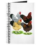 Wyandotte Rooster Assortment Journal