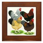 Wyandotte Rooster Assortment Framed Tile