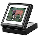 Eland Antelope Photo Keepsake Box