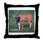 Eland Antelope Photo Throw Pillow