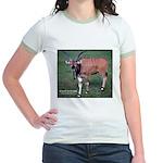 Eland Antelope Photo (Front) Jr. Ringer T-Shirt