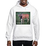 Eland Antelope Photo (Front) Hooded Sweatshirt