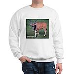 Eland Antelope Photo (Front) Sweatshirt