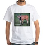 Eland Antelope Photo (Front) White T-Shirt