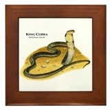 King Cobra Framed Tile