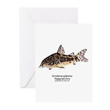 Corydoras paleatus (Cory Cat) Greeting Cards (Pack