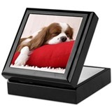 SLEEPING SPANIEL PUPPY Keepsake Box