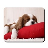 SLEEPING SPANIEL PUPPY Mousepad