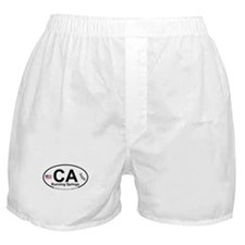 Running Springs Boxer Shorts