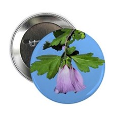 """Rose of Sharon on Blue 2.25"""" Button"""