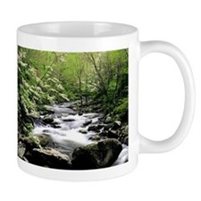 Smokey Mountain Water Falls Mug