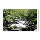 Smokey Mountain Water Falls Decal