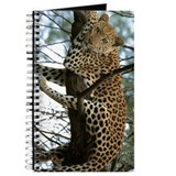 LEOPARD - PANTHERA PARDUS Journal