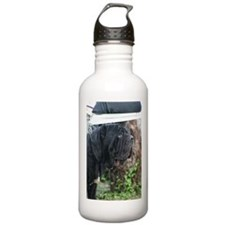 LC mastini Water Bottle