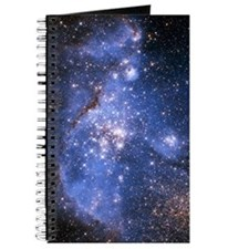 Infant Stars Journal