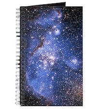 Infant Stars Journal