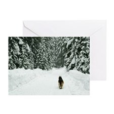 Alone on the Trail Greeting Cards (Pk of 10)