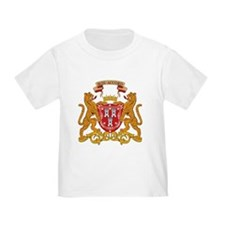 Aberdeen Coat of Arms T