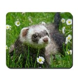 Mousepad - Ferret Art