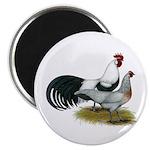 Phoenix Silver Chickens Magnet