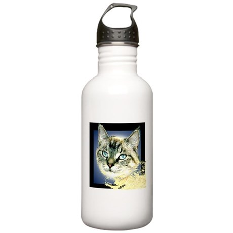 Blue Eyed Kitten Stainless Water Bottle 1.0L