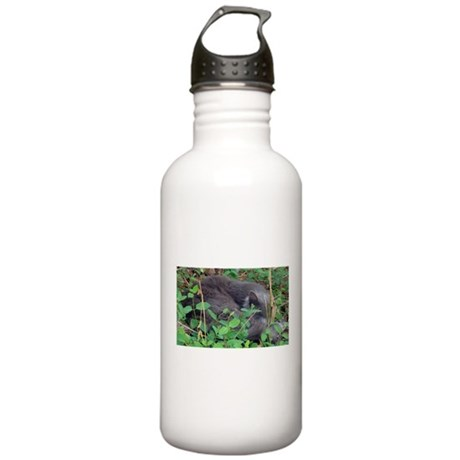 Honeysuckle Nap Stainless Water Bottle 1.0L
