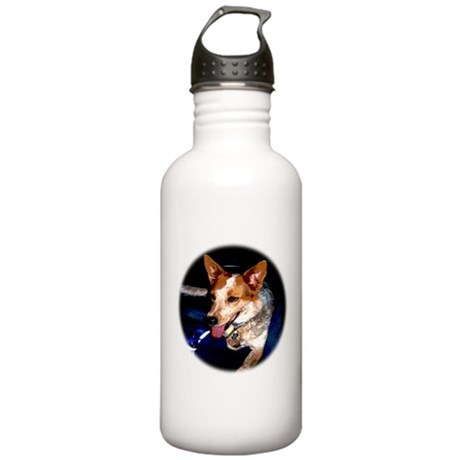 Red Heeler Stainless Water Bottle 1.0L