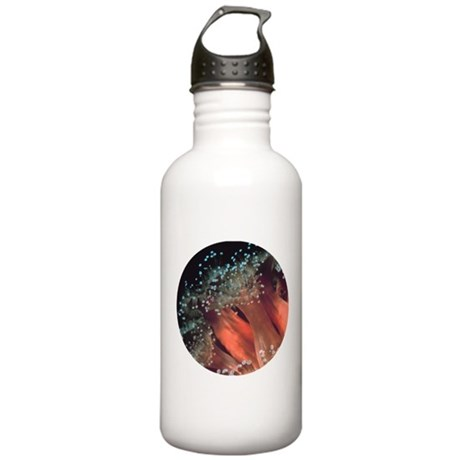 Strawberry Anemone Stainless Water Bottle 1.0L