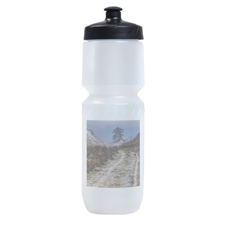 Dragonflies Thermos Food Jar