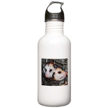 Possum Love Stainless Water Bottle 1.0L