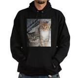 Just Kittens Hoody