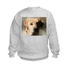 Cute Lab Sweatshirt