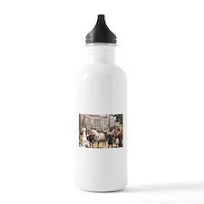 TOP Sport of Kings Water Bottle