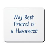 My Best Friend is a Havanese Mousepad