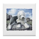 OES on the rocks Tile Coaster