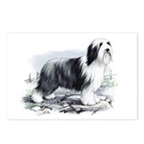 Funny Collie Postcards (Package of 8)