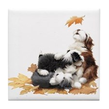 Cool Bearded collie Tile Coaster