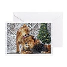 lions in snow Greeting Cards (Pk of 10)