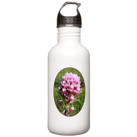 Purple Owl's Clover Stainless Water Bottle 1.0L