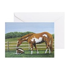 Paint Mare & Foal Greeting Cards (Pk of 20)