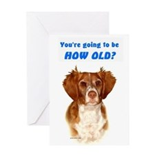 Brittany Spaniel Birthday Card