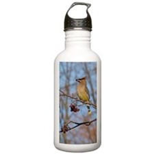 Cedar Waxwing Water Bottle