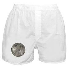 Peace Dollar Reverse Boxer Shorts