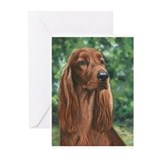 Irish Setter Greeting Cards (Pk of 10)