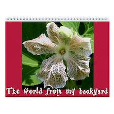 The World from my Backyard Wall Calendar
