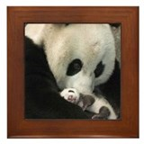 MAMA PANDA BEAR Framed Tile