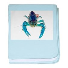 Blue Crayfish baby blanket