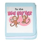 Big Sister (Monkey) baby blanket
